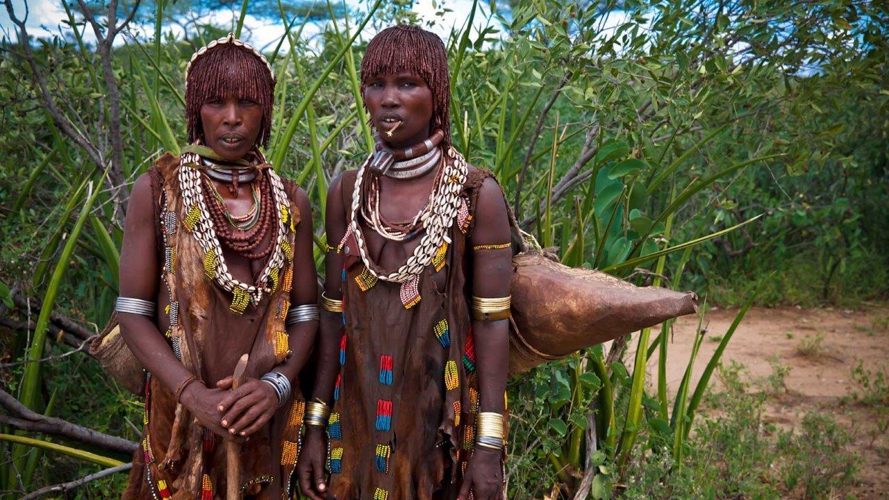 Ethiopya Yurtdışı Kargo Gönderimi - Evrak | Koli | Numune