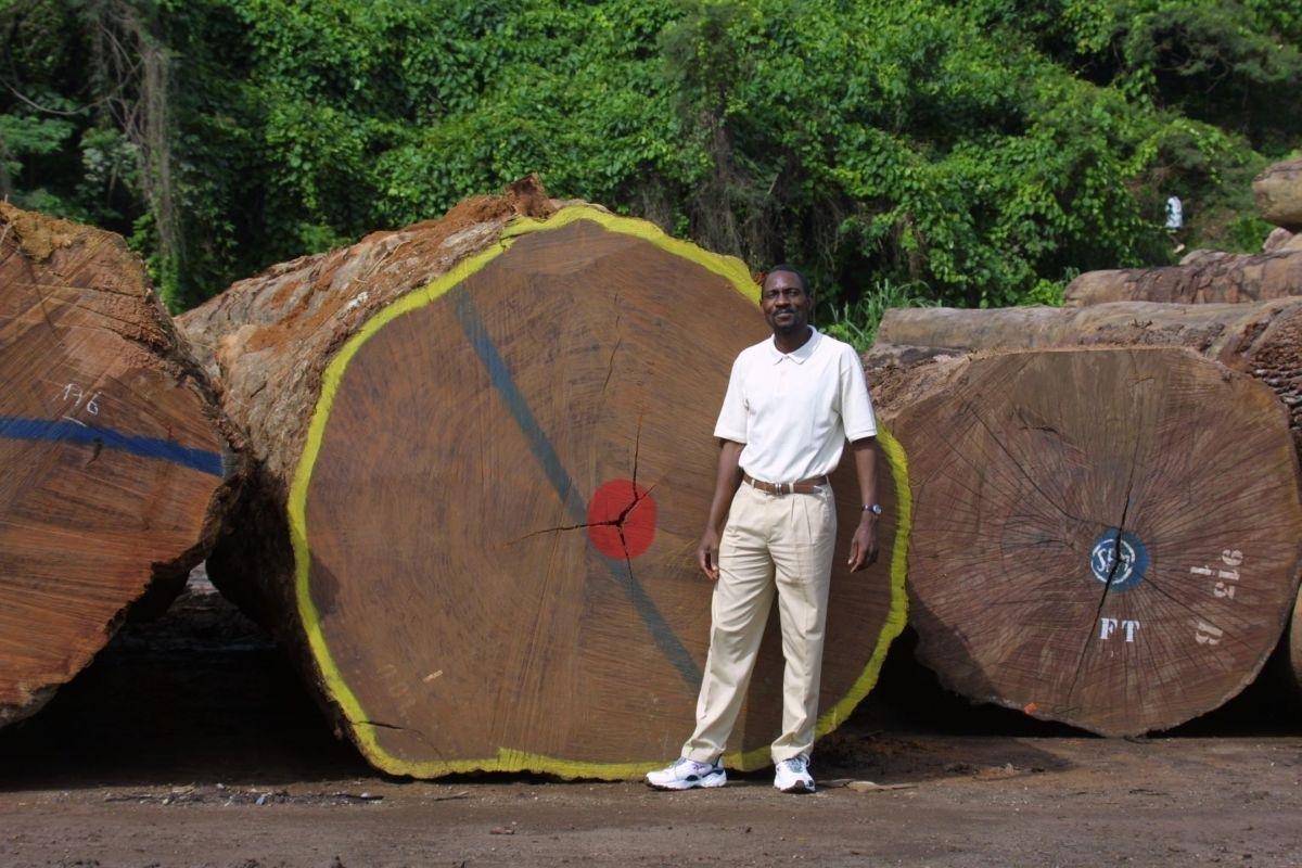 Gabon Yurtdışı Kargo Gönderimi - Evrak | Koli | Numune