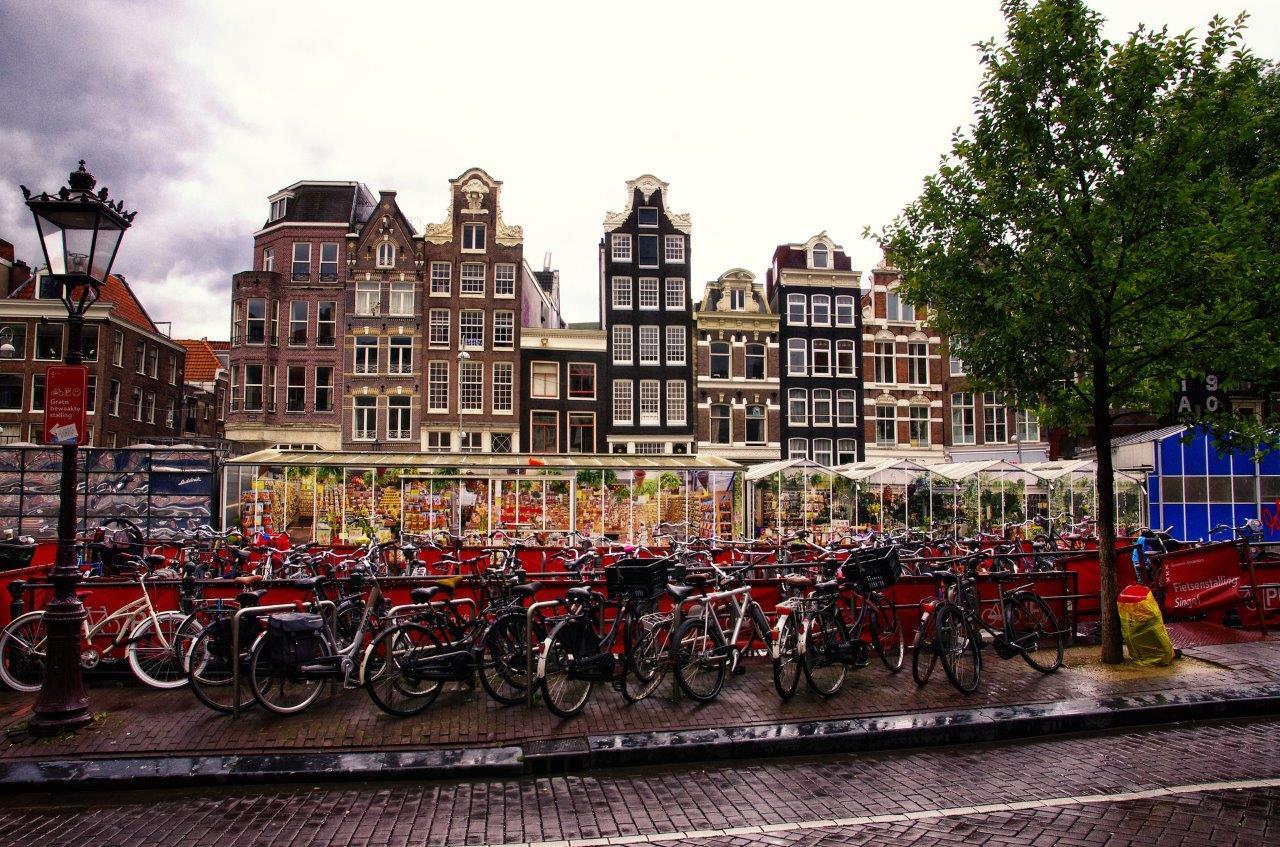 Hollanda Yurtdışı Kargo Gönderimi - Evrak | Koli | Numune