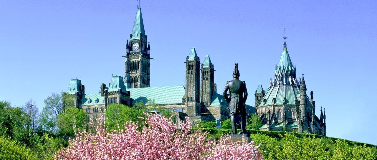 Kanada Yurtdışı Kargo Gönderimi - Evrak | Koli | Numune