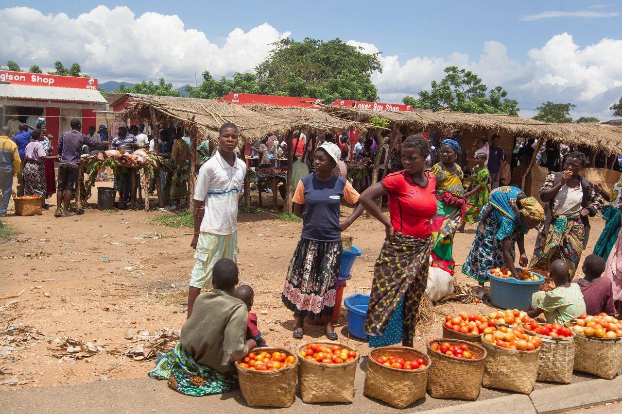 Malavi Yurtdışı Kargo Gönderimi - Evrak | Koli | Numune