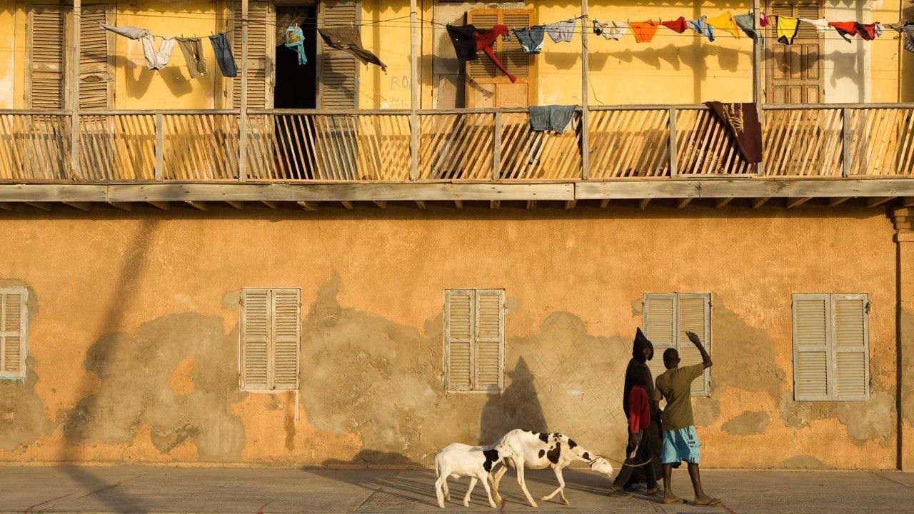 Senegal Yurtdışı Kargo Gönderimi - Evrak | Koli | Numune
