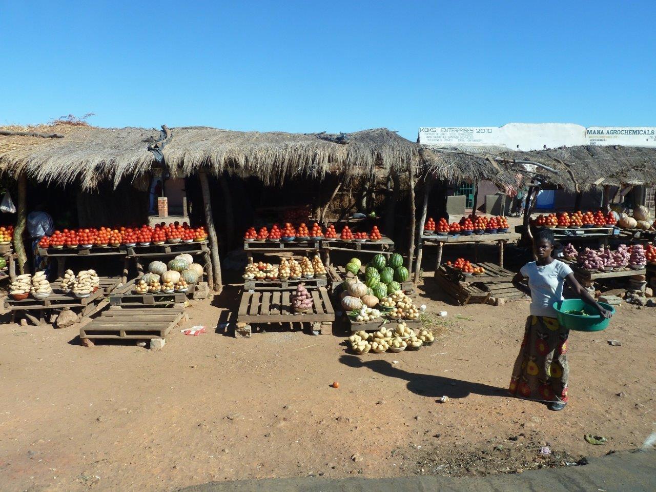 Zambia Yurtdışı Kargo Gönderimi - Evrak | Koli | Numune