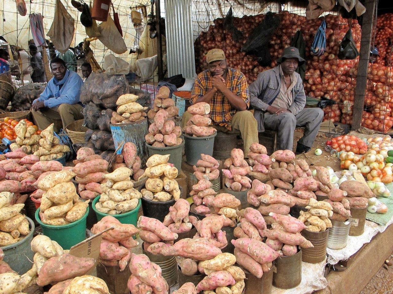 Zimbabve Yurtdışı Kargo Gönderimi - Evrak | Koli | Numune